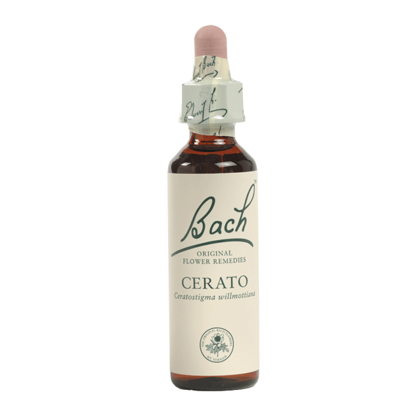 Image of Bach Flower - Cerato, 10ml