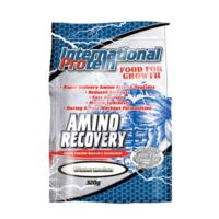 AMINO RECOVERY BY INTERNATIONAL PROTEIN 30srv